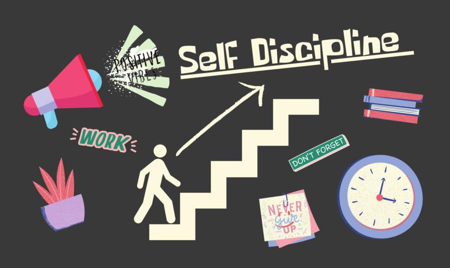 Что такое дисциплина и зачем она нужна