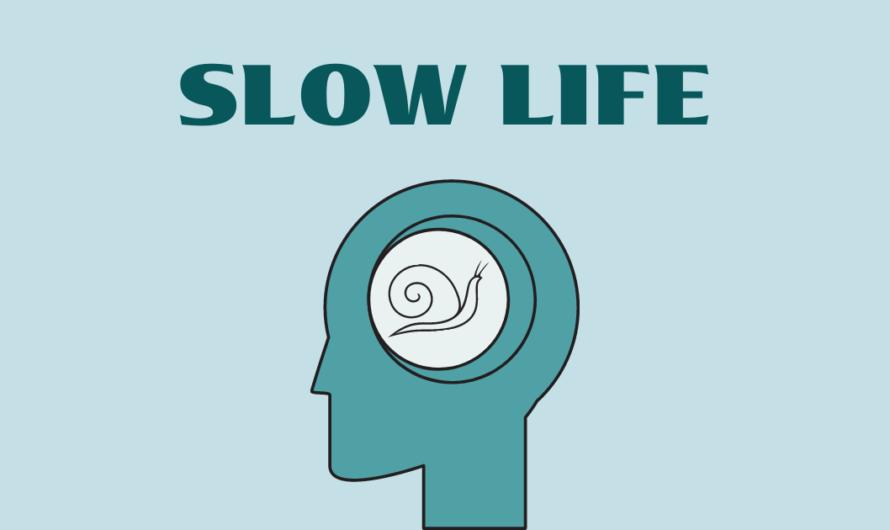Slow Life: философия медленной жизни